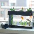 1450313312-mini-garden-aquarium-fish-tank-w-cactus-led-black-aquatic-world-ii-iecofun-1212-20-iecofun-13---copy